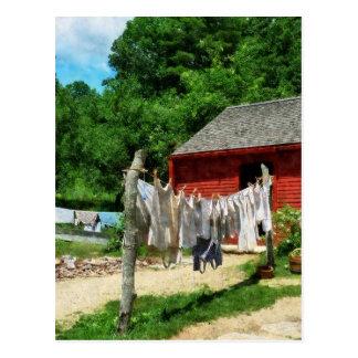 Laundry Hanging on Line Postcard