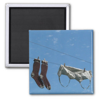 Laundry on the Line Magnet
