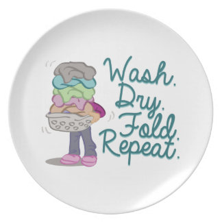 Laundry Wash Dinner Plate
