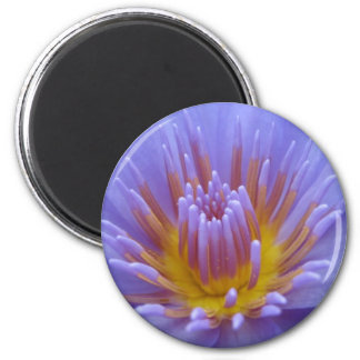 Laura Frase 2 Inch Round Magnet
