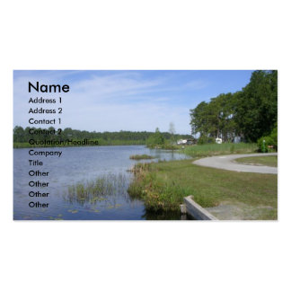 Laura S. Walker State Park Double-Sided Standard Business Cards (Pack Of 100)