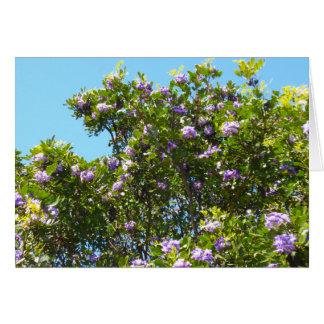 Laurel de montaña con el cielo azul felicitacion