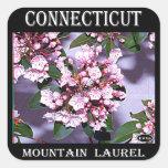 Laurel de montaña de Connecticut