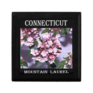 Laurel de montaña de Connecticut Joyero Cuadrado Pequeño