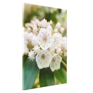 Laurel de montaña en la floración impresión en tela