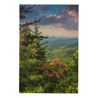 Laurel de montaña en la salida del sol impresiones en madera