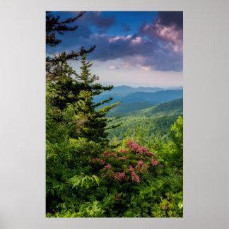 Laurel de montaña en la salida del sol póster