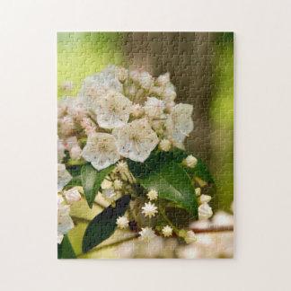 Laurel del Mt en la floración Puzzle