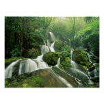 Laurel Falls, Tennessee Poster