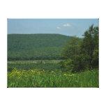 Laurel Highlands Pennsylvania Summer Photography Canvas Print