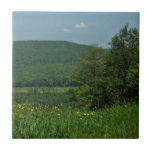 Laurel Highlands Pennsylvania Summer Photography Ceramic Tile