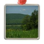 Laurel Highlands Pennsylvania Summer Photography Metal Ornament