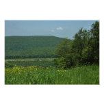 Laurel Highlands Pennsylvania Summer Photography Photo Print