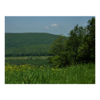 Laurel Highlands Pennsylvania Summer Photography Poster