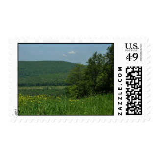 Laurel Highlands Pennsylvania Summer Photography Stamp