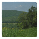 Laurel Highlands Pennsylvania Summer Photography Trivet