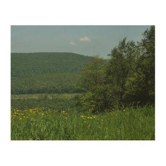 Laurel Highlands Pennsylvania Summer Photography Wood Wall Art