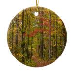 Laurel Hill Trail in Fall Ceramic Ornament