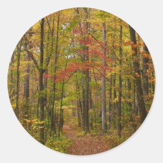 Laurel Hill Trail in Fall Classic Round Sticker