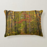 Laurel Hill Trail in Fall Decorative Pillow