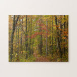 Laurel Hill Trail in Fall Jigsaw Puzzle