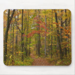 Laurel Hill Trail in Fall Mouse Pad