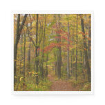 Laurel Hill Trail in Fall Paper Napkin