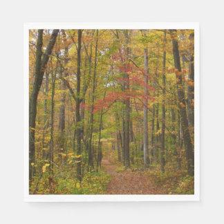 Laurel Hill Trail in Fall Paper Napkin