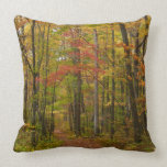 Laurel Hill Trail in Fall Throw Pillow
