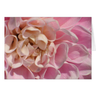 Laurie's Dahlia Greeting Card