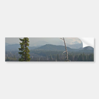 Lava Fields and panoramic  at McKenzie Pass Oregon Bumper Sticker