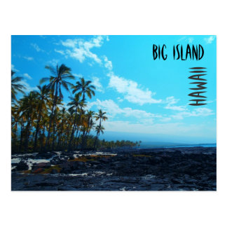 Lava palm scenic Hawaii postcard