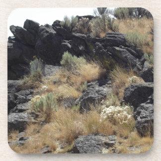 Lava Rock Coaster