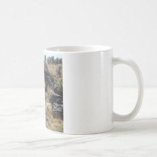 Lava Rock Coffee Mug
