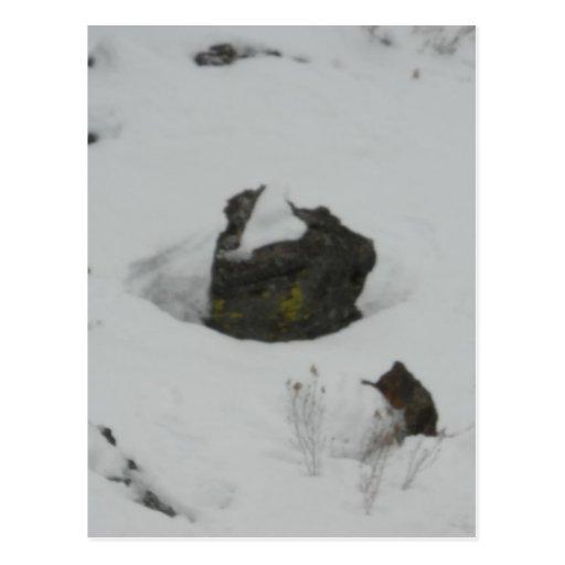 Lava rock in snow postcard
