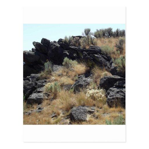 Lava Rock Post Card