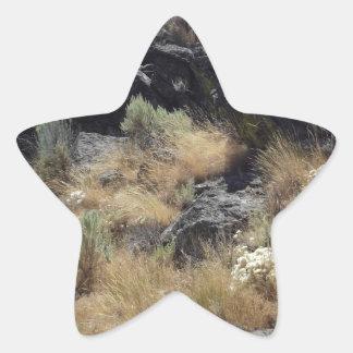Lava Rock Star Sticker