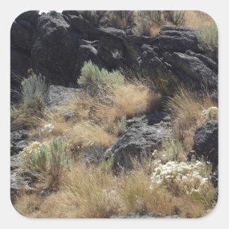 Lava Rock Square Stickers