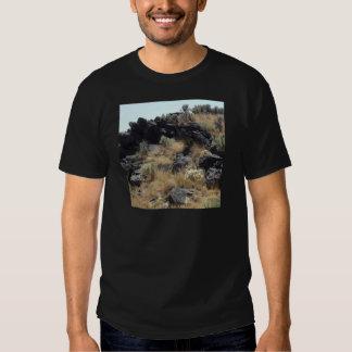 Lava Rock T-shirt