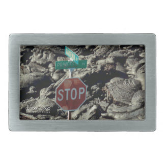 Lava Stop Photo Belt Buckle