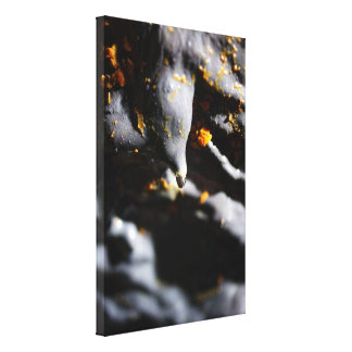 Lava tube cave detail canvas print