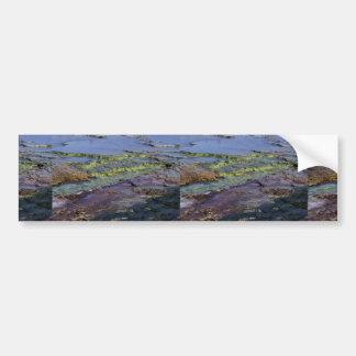 Lavabo intermediario del géiser 456 únicos Yellow Etiqueta De Parachoque