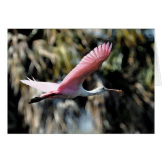 Lavado de la acuarela del Spoonbill rosado Felicitaciones