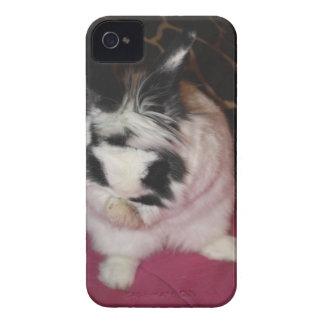 Lavado del conejito iPhone 4 Case-Mate carcasas
