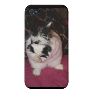 Lavado del conejito iPhone 4 coberturas