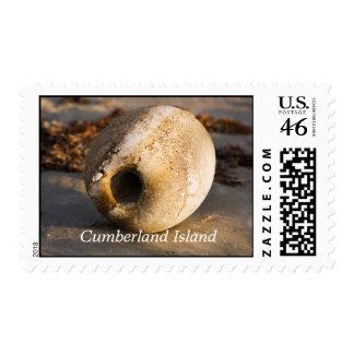 Lavado en tierra en la isla del Cumberland
