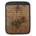 Lavanda del vintage en el papel de escribir apenad funda para iPads