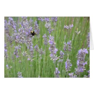 Lavander with Bee Card