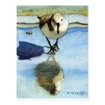 Lavandera 6, pájaro, océano, playa, náutica, arte tarjetas postales