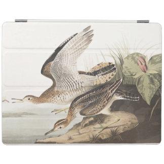 Lavandera de Bartram de la placa 303 de Audubon Cover De iPad
